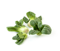 Inflorescences Chinese cabbage Pak-choi (salad) on a clean white - PhotoDune Item for Sale