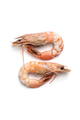 Two boiled shrimps close-up. Isolated on white background. - PhotoDune Item for Sale