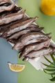 Freshly frozen capelin lies on a white plate on a light blue-gre - PhotoDune Item for Sale