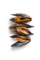 Three fresh mussels close-up on a white background. Isolated. - PhotoDune Item for Sale