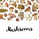 Vector Hand Drawn Mushrooms Background