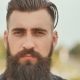 Face of a Brutal Man with a Beard. - VideoHive Item for Sale