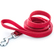 Red leash - PhotoDune Item for Sale