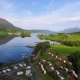 Beautiful Nature Norway Aerial View of the Campsite To Relax - VideoHive Item for Sale
