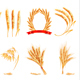 Ears of Wheat - GraphicRiver Item for Sale