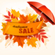 Autumn Sale Card With Colorful Leaves and Umbrella - GraphicRiver Item for Sale