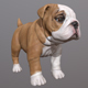 Bulldog Puppy - 3DOcean Item for Sale