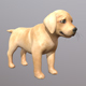 Retriever puppy - 3DOcean Item for Sale