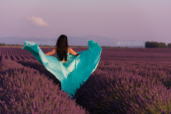 woman in lavender flower field - Stock Photo - Images