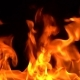 Igniting Fire Isolated on Black Background - VideoHive Item for Sale