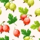 Seamless Pattern with Green and Pink Gooseberry