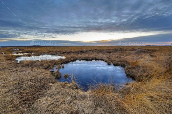 Sunset over Rehdener Geestmoor - Stock Photo - Images