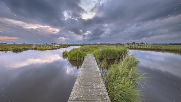 Wooden footbridge in wetland river - Stock Photo - Images
