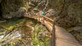 Soteska vintgar gorge boardwalk along river - PhotoDune Item for Sale