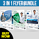 3 in 1 Corporate Flyer - Business Flyer