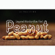 Peanut - GraphicRiver Item for Sale