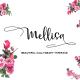 Mellisa Calligraphy Font - GraphicRiver Item for Sale