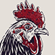 Rooster | Vector Art and Design - GraphicRiver Item for Sale