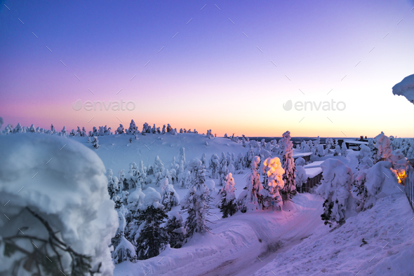 Fantastic winter sunrise in mountains with snow covered fir trees - Stock Photo - Images