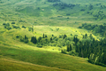 View on highland Lagonaki, Republic of Adygea, Russia - PhotoDune Item for Sale