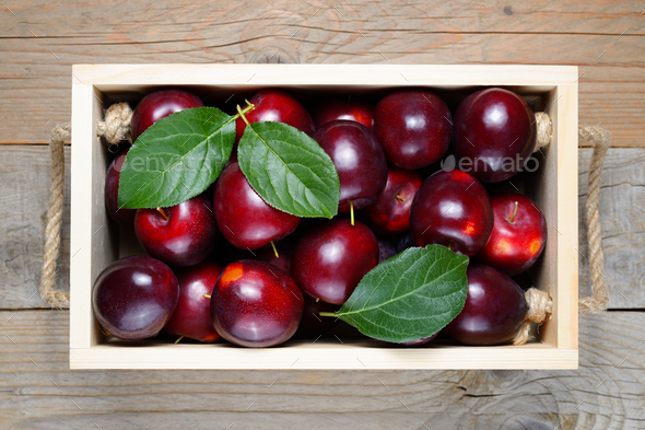 Plums in wooden box close-up - Stock Photo - Images