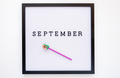 Back to school concept. September notice on message board - PhotoDune Item for Sale