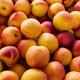Yellow nectarine as vegetarian food concept - PhotoDune Item for Sale