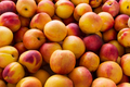Yellow nectarine as vegetarian food concept - PhotoDune Item for Sale