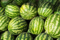Watermelon as abundance harvest symbol - PhotoDune Item for Sale