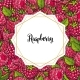 Raspberry Seamless Pattern with Fresh Ripe Berries