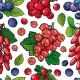 Summer Berries Seamless Pattern - GraphicRiver Item for Sale
