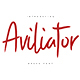 Aviliator Brush Font - GraphicRiver Item for Sale