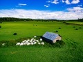 Aerial view of round straw bales in black plastic in green field in rural Finland. - PhotoDune Item for Sale