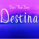 Destina Script Font - GraphicRiver Item for Sale