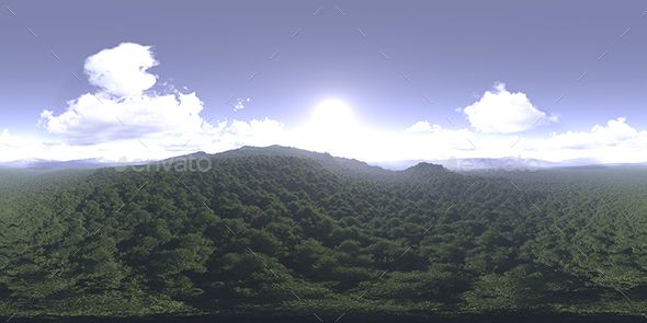 Late Morning Forest HDRI Sky - 3DOcean Item for Sale