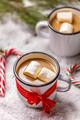 Homemade hot chocolate - PhotoDune Item for Sale