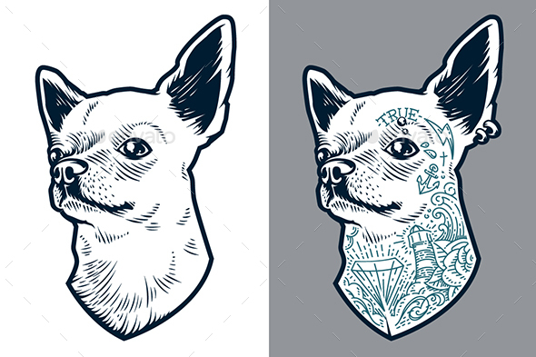 Tattooed Chihuahua | Vector Art - Animals Characters