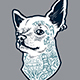 Tattooed Chihuahua | Vector Art - GraphicRiver Item for Sale