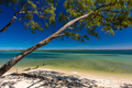 Beach with trees on the west side of Bribie Island, Queensland, - PhotoDune Item for Sale