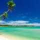 Tropical beach with coconut palm trees and clear lagoon, Fiji Is - PhotoDune Item for Sale