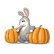 Rabbit Cartoon Illustration with Pumpkins - GraphicRiver Item for Sale