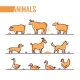 Set of Farm Animals - Line Design Style Colorful