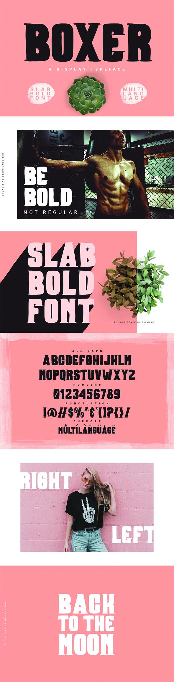 Boxer Typeface - Decorative Fonts