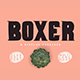 Boxer Typeface - GraphicRiver Item for Sale