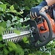 Petrol Hedge Clippers