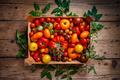 Fresh tomatoes - PhotoDune Item for Sale