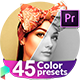 Free Download Color Correction & Color Grading Presets for Premiere Pro Nulled