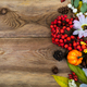 Thanksgiving greeting with small pumpkin, rowan, copy space - PhotoDune Item for Sale