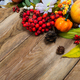 Fall decor with small pumpkin on wooden table, copy space - PhotoDune Item for Sale