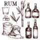 Composition of Alcoholic Beverage Rum. - GraphicRiver Item for Sale
